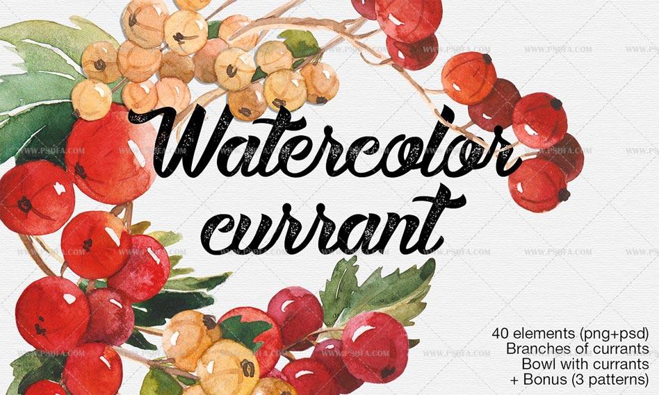 دانلود مجموعه پترن میوه انگور و عناصر آن در طرح و سبک آبرنگی با کیفیت بالا