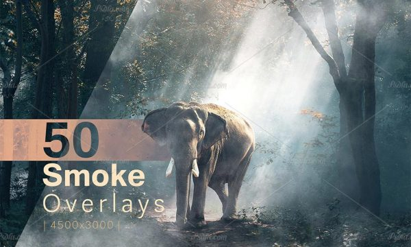 مجموعه 50 افکت دود و مه فتوشاپ با کیفیت و رزولوشن بالا