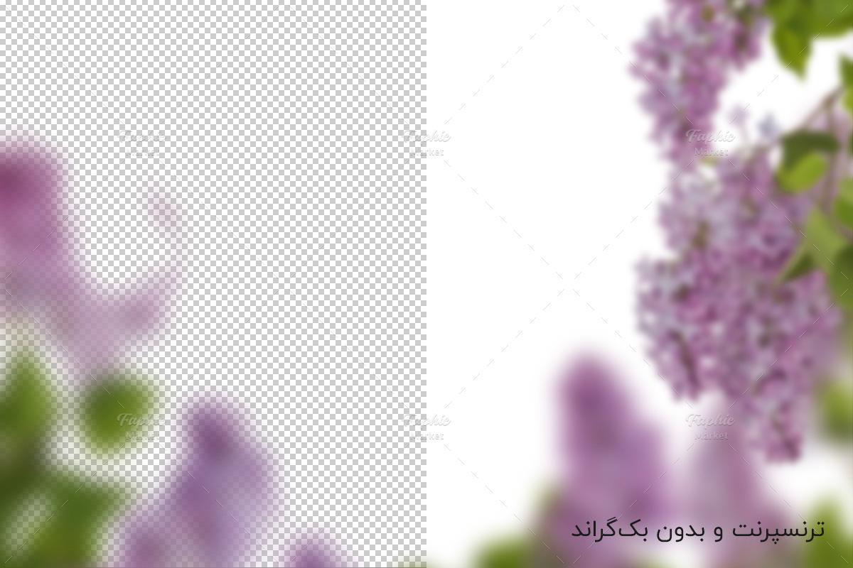 افکت گل یاس بنفش بهاری