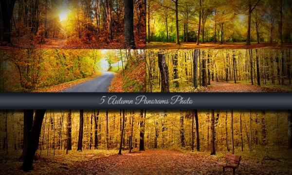 5 عکس و تصویر با کیفیت از پاییز به صورت پانوراما و عریض