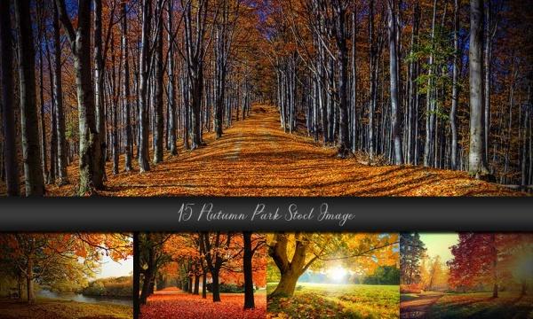 15 عکس و تصویر با کیفیت پارک در فصل پاییز از فتولیا Autumn Park