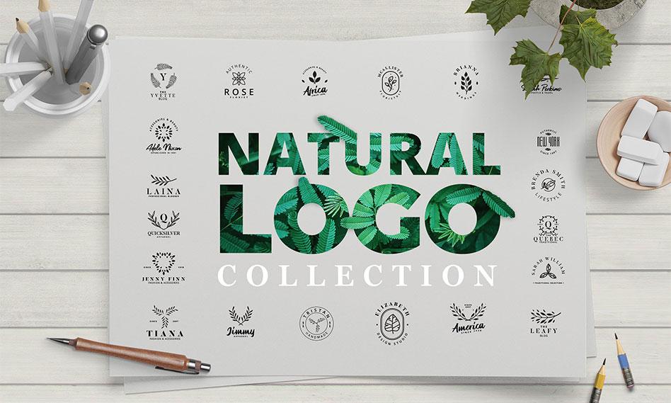 مجموعه 30 طرح وکتور لوگوهای الهام بخش طراحی با برگ برای حرفه های مختلف