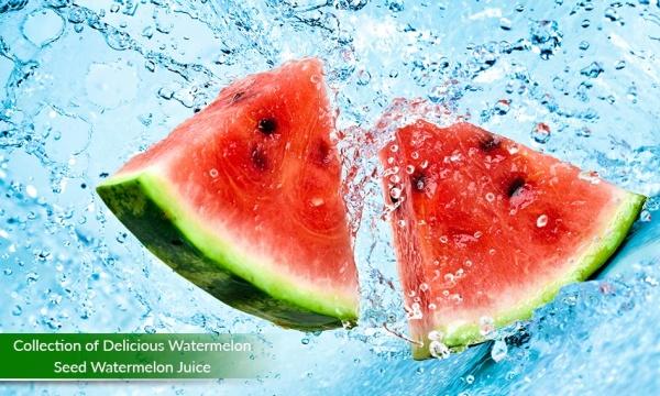 مجموعه تصاویر هندوانه و آب هندوانه با کیفیت بالا از شاتر استوک