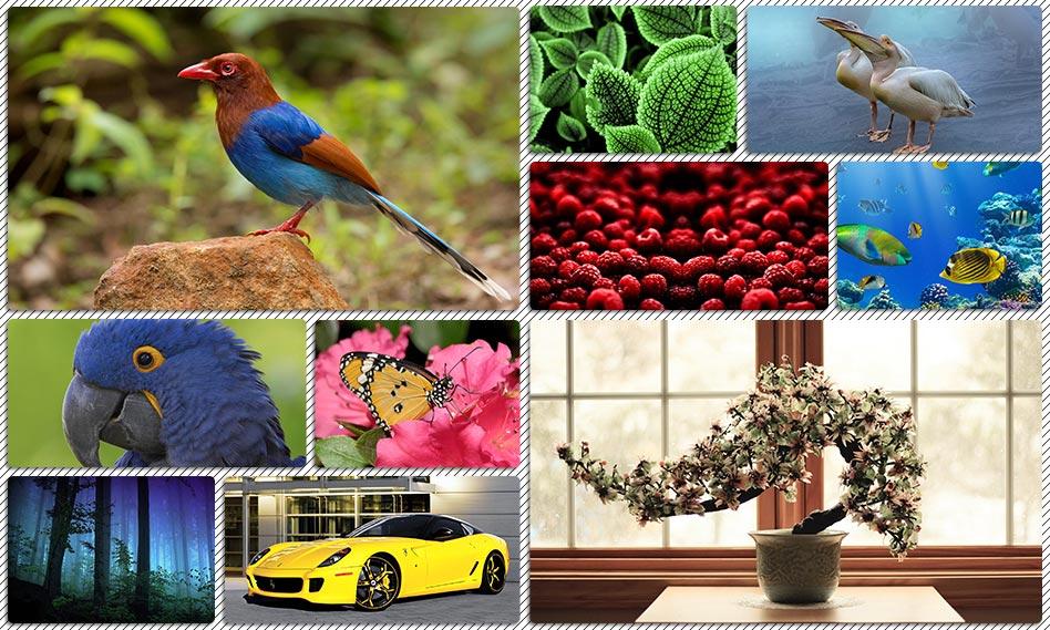 مجموعه والپیپر متنوع از طبیعت با کیفیت بالا برای دسکتاپ