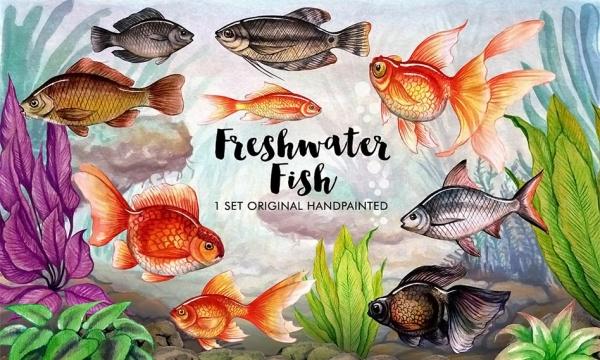 تصاویر کلیپ آرت ماهی و عناصر طراحی دریایی با طرح آبرنگی