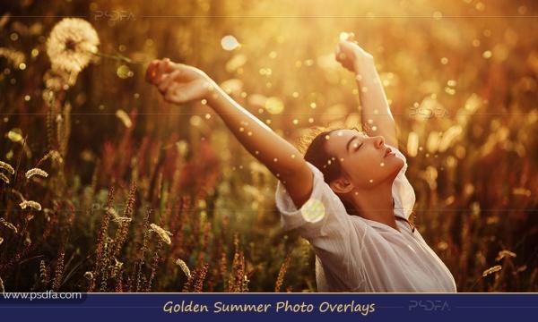 افکت تابش طلایی نور خورشید در تابستان برای عکس و تصاویر