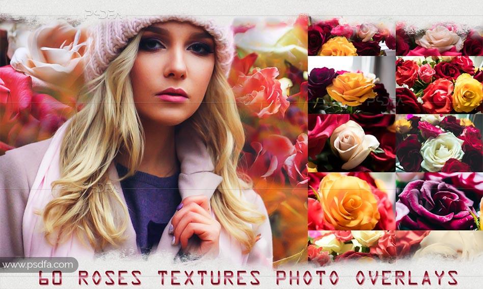60 بک گراند و تکسچر گل رز با رنگ های متنوع و کیفیت بالا