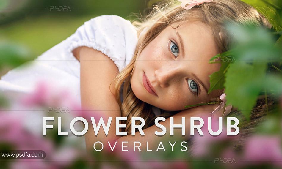 افکت گل و درختچه گل برای عکس و تصاویر با کیفیت بالا