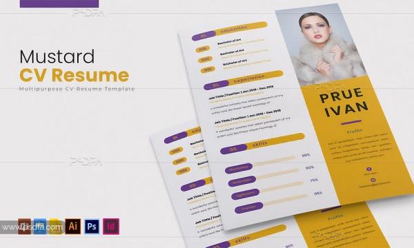 طرح لایه باز رزومه حرفهای شرکتی برای فتوشاپ، ایلوستریتور، ایندیزاین و …