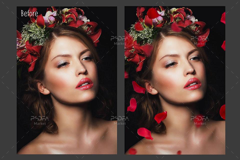 افکت گلبرگ گل رز قرمز