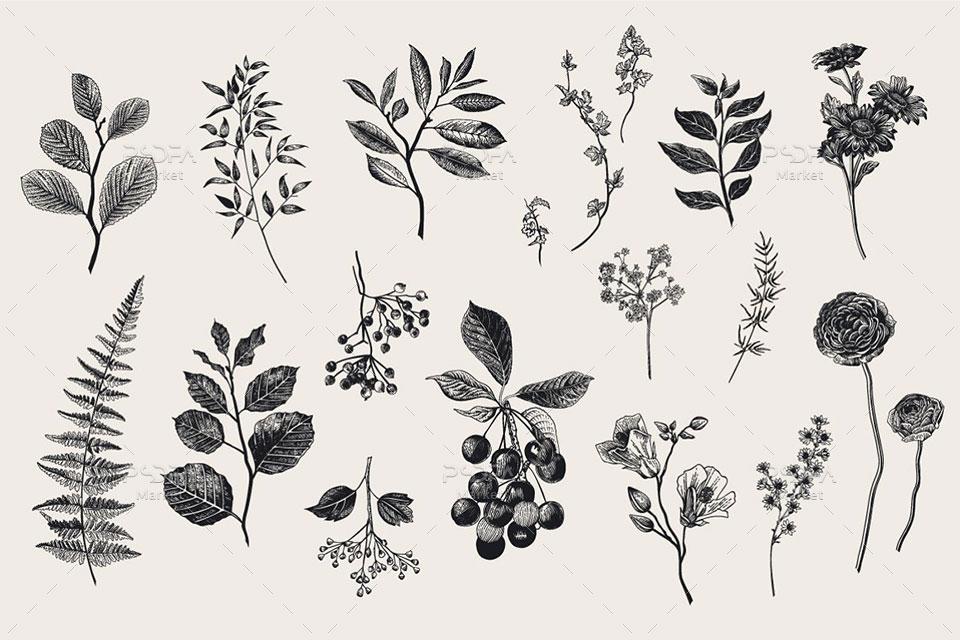 وکتور گل و بوته و دسته گل